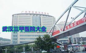武汉三甲医院排名 武汉三甲医院有哪些