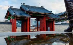 韩国旅游注意 崔顺实三个字违法不能说 罚款多少钱