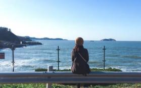 威海环海路风景线照片