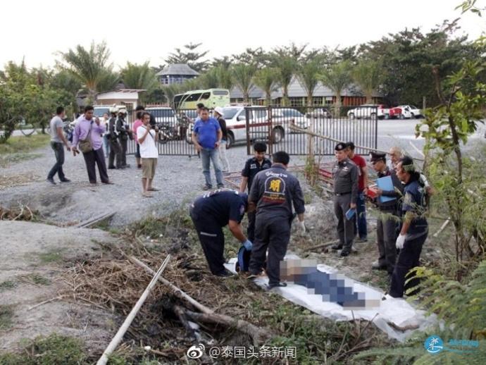 中国游客泰国抓大象尾巴 重庆领队被大象踩踏重伤