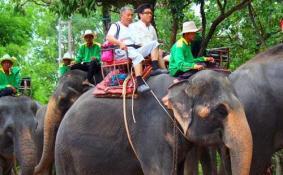 泰国骑大象安全吗 中国驻泰国清迈总领馆发布警告