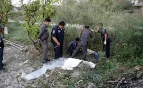 中国导游在泰国营救游客被大象踩死责任赔偿最新消息