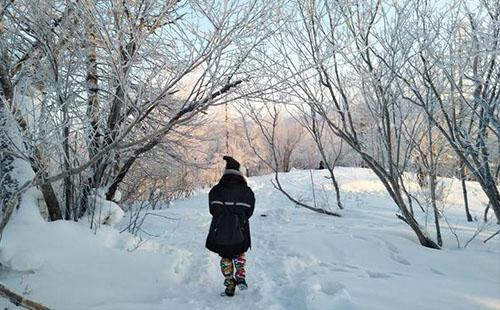 雪乡值得一去吗 雪乡美景照片/图片