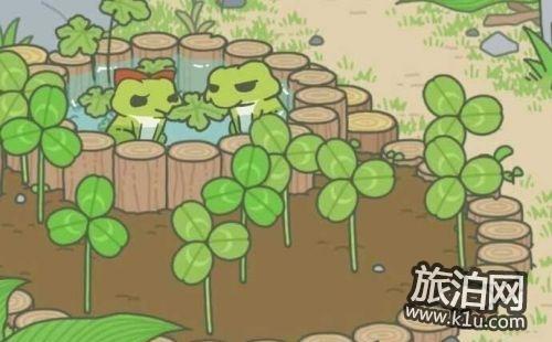 旅行青蛙里的土特产在现实中是什么样子的