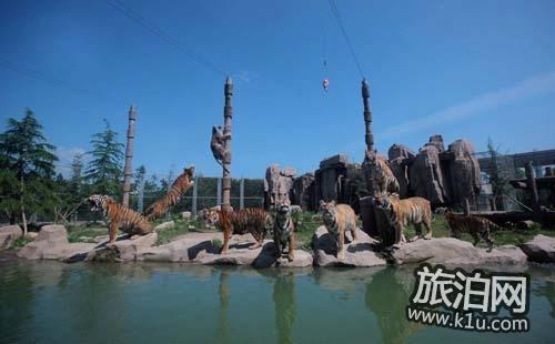 2018上海野生动物园年票(价格+种类+办理流程)