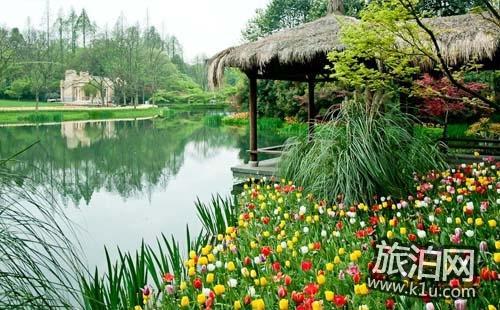 2018杭州太子湾三月份可以看哪些花+花期+最佳路线