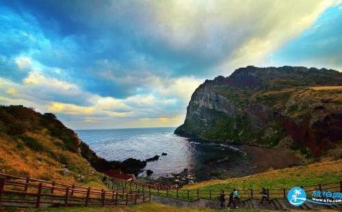 济州岛特产有哪些 济州岛什么特产不能带回国
