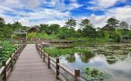 广州南沙湿地公园有什么好吃的 广州南沙湿地公园哪里有好吃的地方