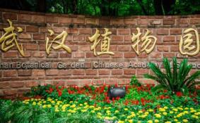 武汉植物园在哪 武汉植物园坐什么车去