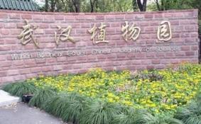 武汉植物园好玩吗 武汉植物园有什么好玩的