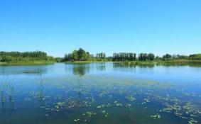 北京翠湖湿地公园里面新增了哪些景点