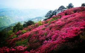 麻城龟峰山游玩攻略 麻城龟峰山风景区旅游攻略