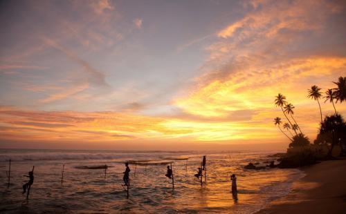 斯里兰卡交通攻略 斯里兰卡几月份去最好