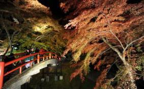 日本签证好办吗 日本签证费多少钱