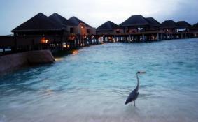 去泰国普吉岛需要准备什么