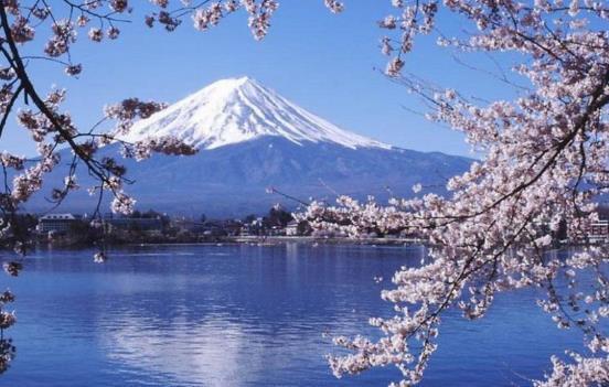 一个人去日本旅游要多少钱