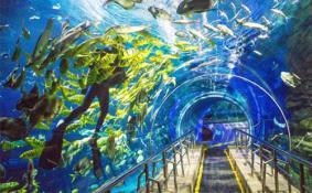 2018端午节北京太平洋海底世界门票有优惠吗