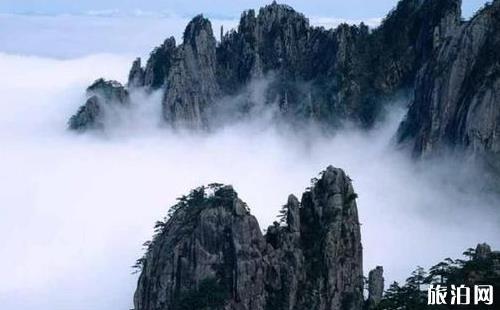 庐山和黄山哪个更好玩 黄山和庐山哪个好玩