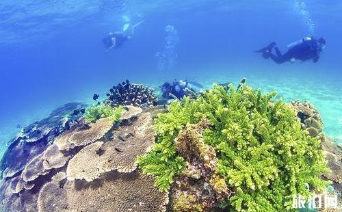 蜈支洲岛和分界洲岛哪个好玩