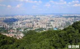 重庆沙坪坝旅游前景