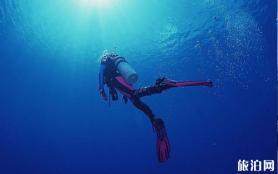 怀孕可以浮潜吗 月经期可以浮潜吗