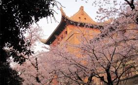 厦门大学和武汉大学哪个实力更强