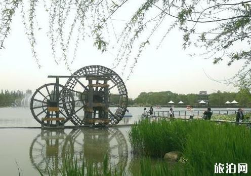 北京国际鲜花港游玩攻略 鲜花港游记
