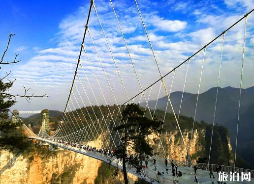 张家界旅游攻微和破开费 武汉去张家界旅游需寻求好多钱 武汉去张家界父亲峡谷玻璃桥怎么走