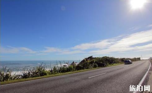 新西兰租车自驾游攻略