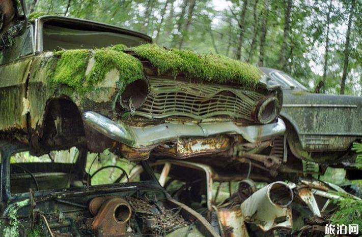 被自然吞噬的汽车 人与自然的景色融合欣赏