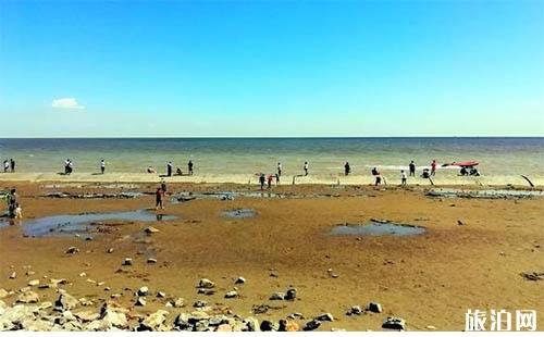 天津有免费海滩 天津免费海滩介绍