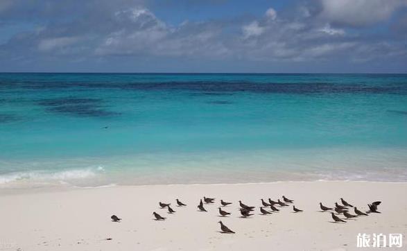 2018十一免签海岛旅游推荐