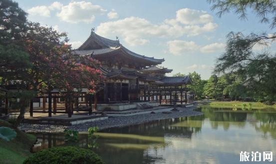 去日本一周带多少现金 日本旅游一周要多少钱