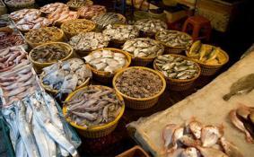 上海的海鲜市场在哪里 上海有海鲜市场吗