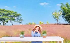 重庆紫云秘境花海景区什么时候开园 紫云秘境花海景区在哪 粉