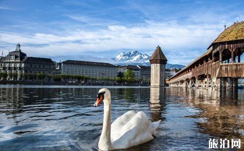 瑞士有什么旅游景点