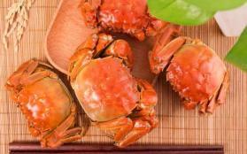 哪里的大闸蟹最好 大闸蟹什么时候吃