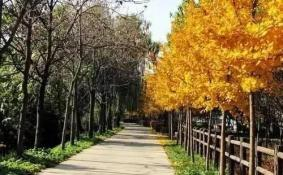 北京周边十一旅游景点推荐