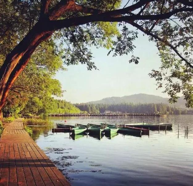 杭州有哪些适合一日游的免费景点推荐