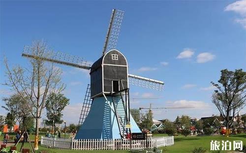 盐城荷兰花海几月花开 荷兰花海在哪