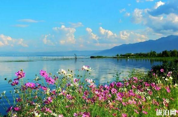 大理洱海旅游攻略图片