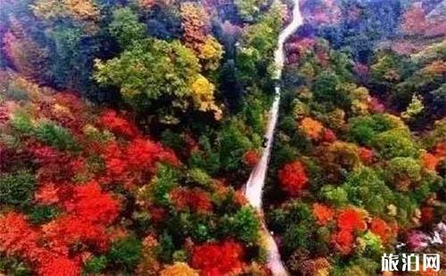 什邡红枫岭景区怎么去 红叶红了吗