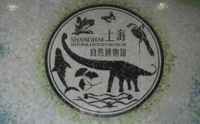 上海自然博物馆开放时间