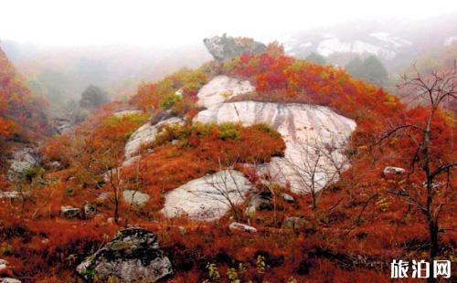大連賞楓去哪里 大連秋冬去哪里旅游