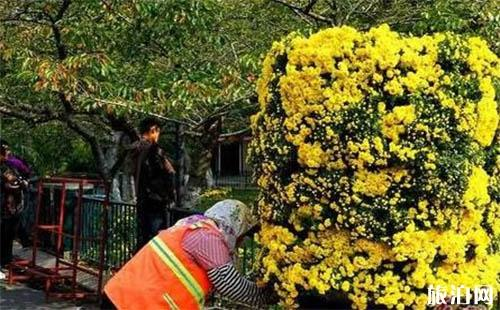 2018青岛中山公园菊花展时间是多少