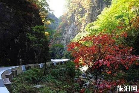 秦岭国道自驾游赏秋最好的路段