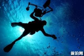 仙本那考潛水證多少錢 仙本那考潛水證要準備什么