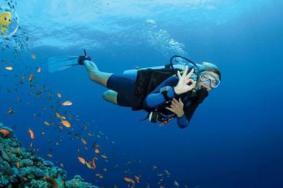 潛水運動安全嗎 潛水新手容易犯的錯誤有哪些