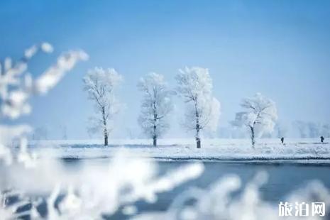 雪乡明码标价宰客最新消息 除了雪乡还可以去哪里看雪