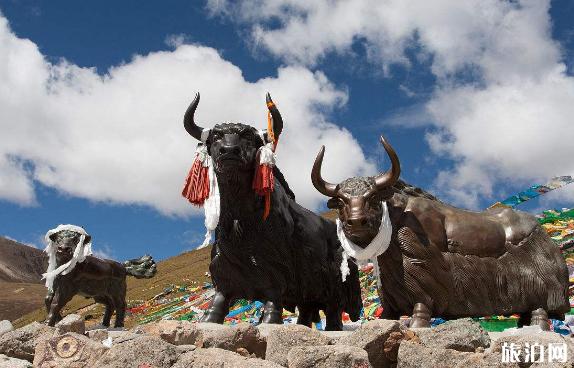 去西藏能去看天葬吗 拉萨带什么特产最好